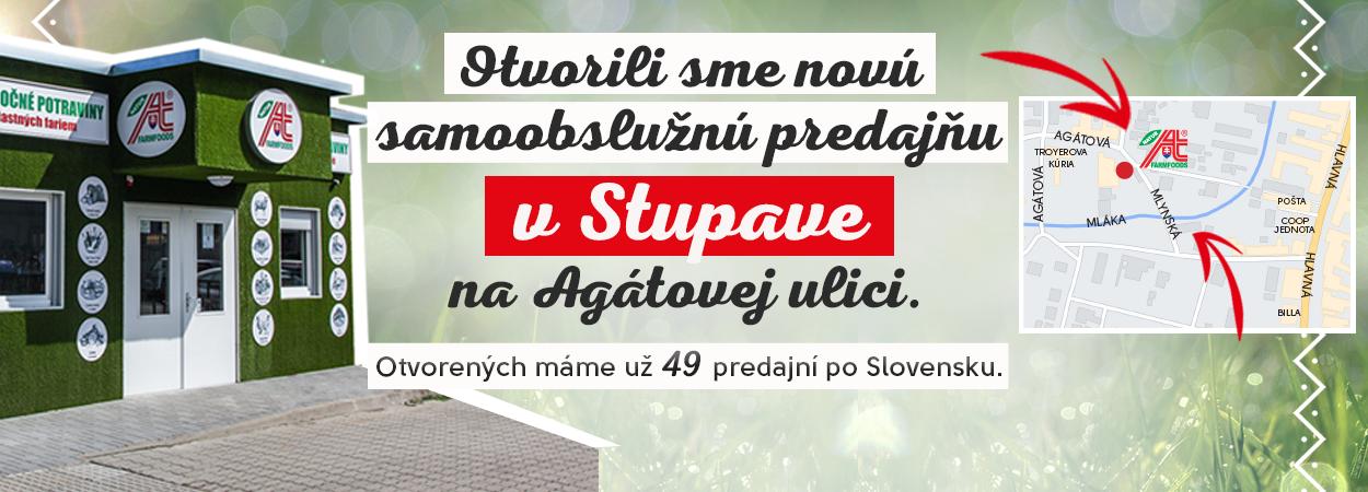 STUPAVA_2